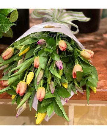 Cut Tulips Bouquet