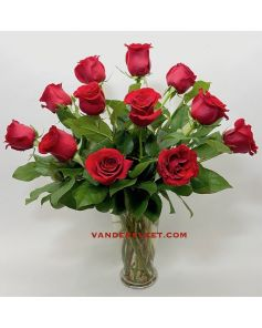 Red Roses - Long Stemmed